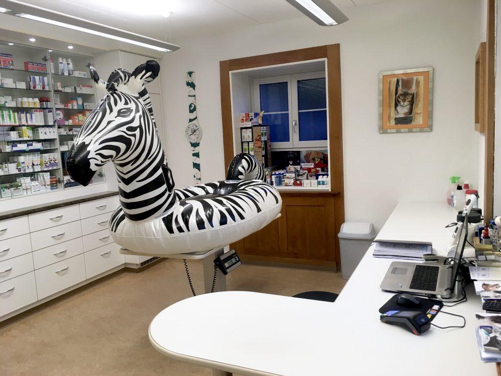 Tierarztpraxis am Rosenberg - Sprech- & Behandlungszimmer
